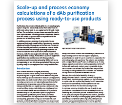 Scale-up and process economy calculations of a dAb purification process using ready-to-use products