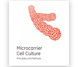 AC Microcarrier cell culture