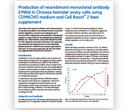 Production of recombinant monoclonal antibody (rMAb) in CHO cells using CDM4CHO medium and Cell Boost 2 feed supplement